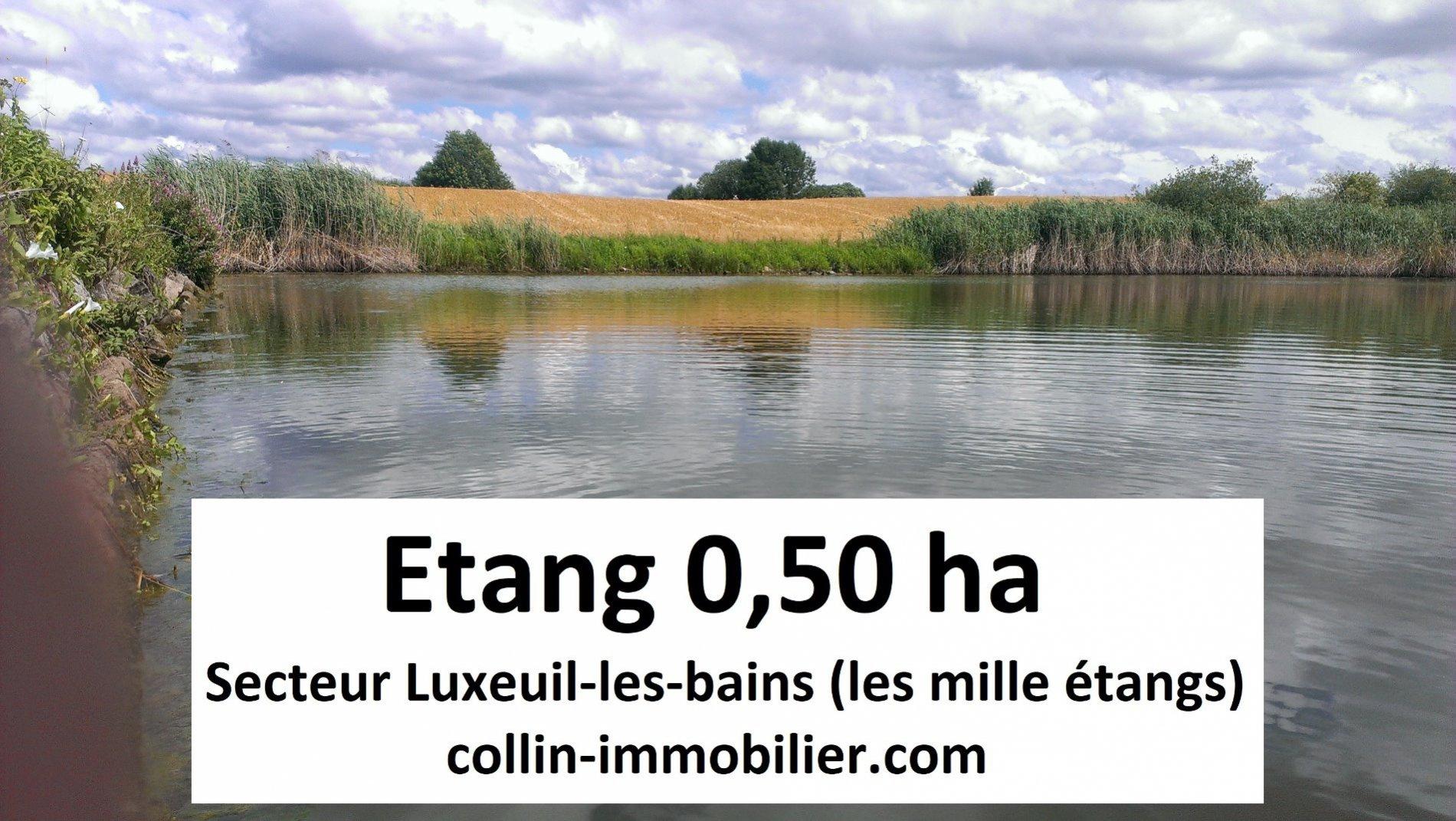 Vente Etangs luxeuil les bains