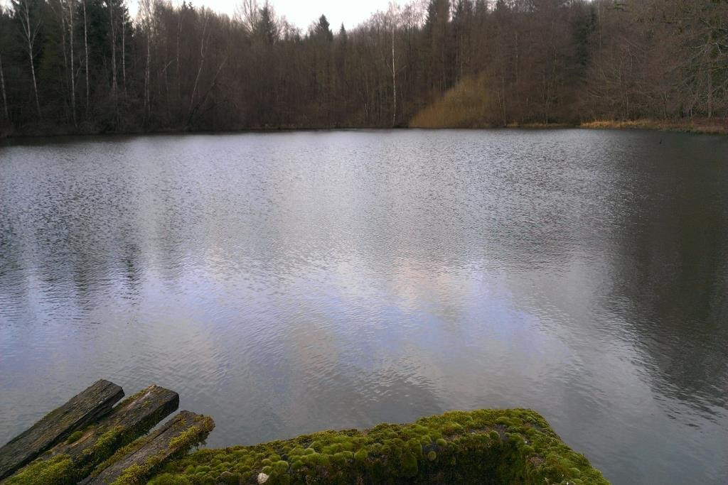 Vente Etangs mulhouse