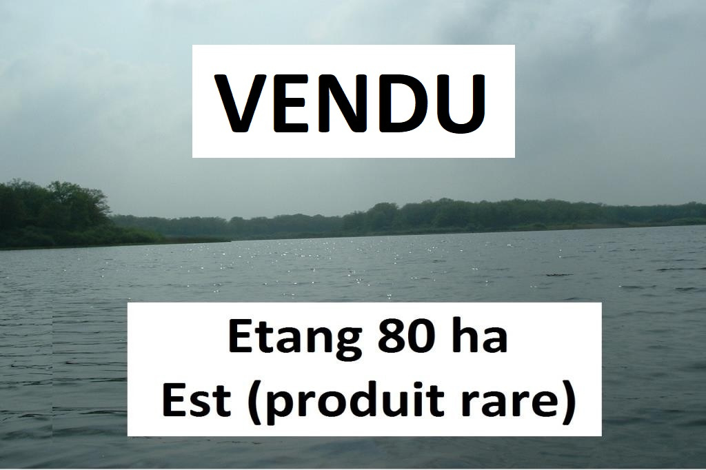 Vente Etangs nancy