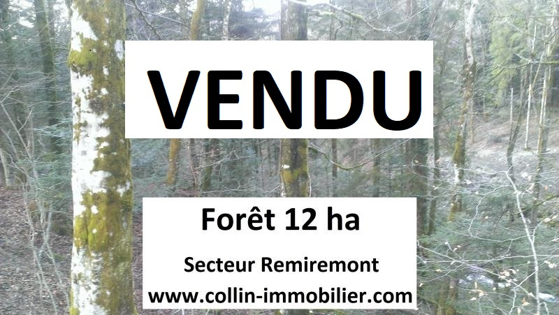 Vente Etangs remiremont